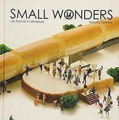 Small Wonders - Life Portrait in Miniature: Tatsuya Tanaka: 9784865050776: Amazon.com: Books