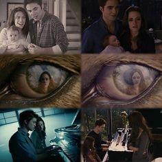 Twilight Forever—Alison Taylor @ilovetwilightforever Instagram photos | Websta