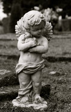 Garden Statue, Cherub Angel, Little boy holding his bunny, 5x7 black and white photograph, Nursery Decorations. $20.00, via Etsy.
