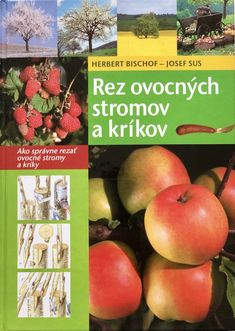 Apple, Fruit, Garden, Decor, Decoration, Decorating, The Fruit, Garten, Dekorasyon