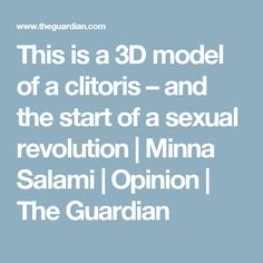 This is a 3D model of a clitoris – and the start of a sexual revolution | Minna Salami | Opinion | The Guardian