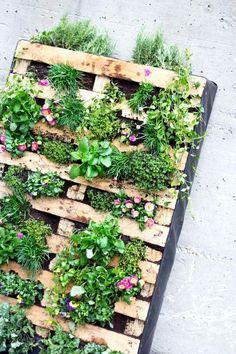 Vertikaler Garten für Balkon und Terrasse: Aus einer Euro-Palette und viel blühendem Grün. #upcycling #urbangardening  gesehen bei www.avogel.de/blog   ©️️ Greenrabbit.co