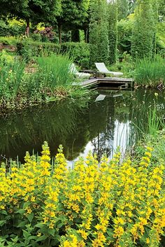 """A great story about designing NATURAL POOLS. """"Dream Team's"""" Portland Garden Garden Design Calimesa, CA"""