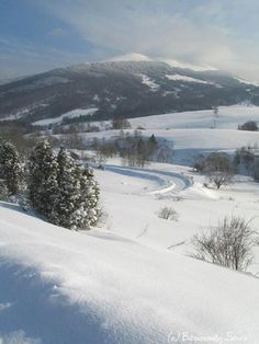 They were so beautiful in winter... Bieszczady