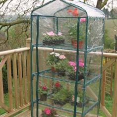 Four Tier Greenhouse|Mr Fothergill's Garden Equipment