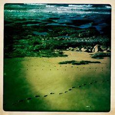 #Hipstamatic para #iPhone. Simula #fotografia com câmaras analógicas baratas a película fotográfica. Fotos: Praia da Granja - Gaia; Porto Santo - Madeira  http://lgb-foto.blogspot.pt/2011/10/hipstamatic.html