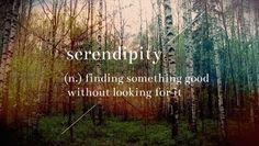 Serendipia: Descubrimiento afortunado e inesperado que se produce cuando se está buscando otra cosa distinta.