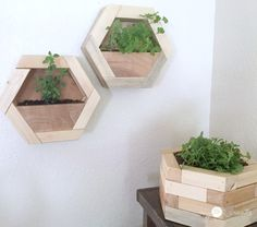 How to make DIY Hexagon Planters, free plans and picture tutorial. Wooden Planter Boxes Diy, Diy Wood Planters, Diy Wall Planter, Indoor Planters, Hanging Planters, Scrap Wood Crafts, Scrap Wood Projects, Woodworking Projects Diy, Diy Projects