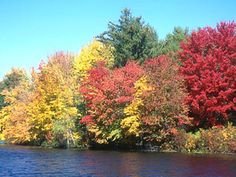 being born and raised in Ohio you never get tired of the beautiful fall foliage, my fave time of year