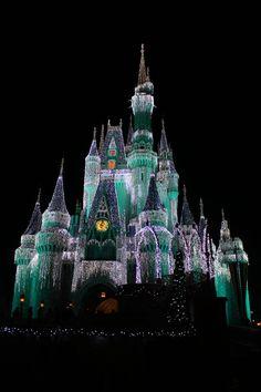 Disney during Thanksgiving week - that's us!