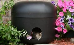 The Kitty Tube: Indoor Outdoor Cat House