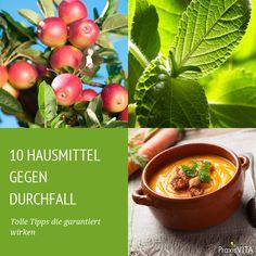 Wussten Sie, dass Äpfel ein gutes Hausmittel gegen Durchfall sind? Wie genau das funktioniert und was noch hilft, erfahren Sie in der Bildergalerie.