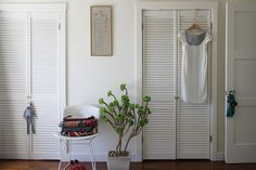 love the plant, the chair, & the boudoir shutters!