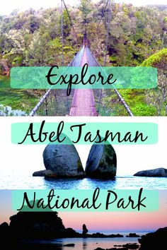 Abel Tasman National Park is one of the most beautiful places in New Zealand. It has everything a nature loving adventurer could ask for; dense green forests, beaches with sunburnt orange sands and crystal clear water. Not to mention the amazing wildlife and ridiculous sunsets. If you're planning a trip to New Zealand South Island click read to find out just how amazing Abel Tasman is. - Soul for Adventure