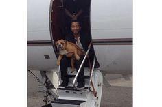 Hot Guys Holding Puppies - Channing Tatum, Taye Diggs, and Adam Levine