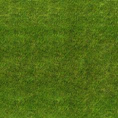 Grass Texture | SEAMLESS GRASS TEXTURE