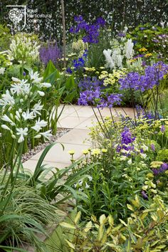 Backyard Garden Inspiration A great garden for people and pollinators - a great mix!Backyard Garden Inspiration A great garden for people and pollinators - a great mix! Back Gardens, Small Gardens, Outdoor Gardens, Indoor Garden, Purple Garden, Colorful Garden, Purple Plants, Gravel Garden, Garden Path