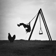 freedom swing...
