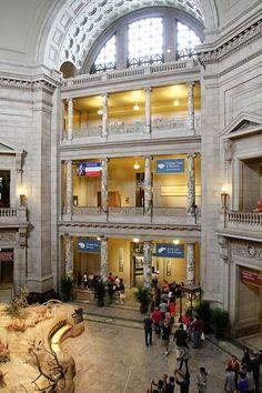 Museum of Natural History, Washigton, DC