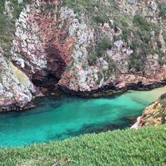 Ilha Grande berlengas. PORTUGAL.
