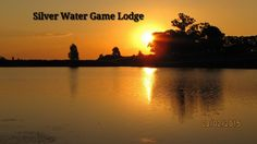 Silver Water Game Lodge is a newly establishment with the scope to cater for all in need of an exciting nature escape.