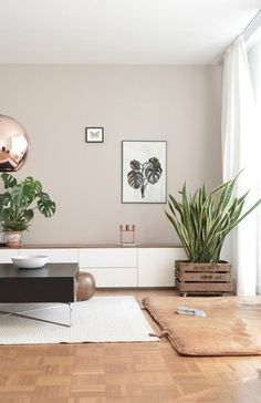 This living room gives a very nice feeling. The copper ball ceiling lamp is a gr… This living room gives a very nice feeling. The copper ball ceiling lamp is a great match witch the wall color, the plants are a contrasting element. Living Room Windows, Living Room Interior, Home Living Room, Living Room Designs, Living Room Decor, Apartment Interior, Living Room Walls, Neutral Living Room Paint, Earthy Living Room