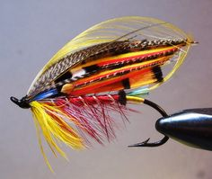 The Kate featherwing atlantic salmon fly.