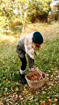 basket full of mushrooms in a HtoT gorgeous fall outfit.