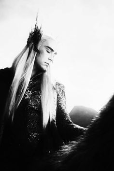 Thranduil, King of the Woodland Realm, or King of Sass in meme fandom. Have you seen him sashay off on that epic elk? I may not survive Desolation of Smaug due to fabulousness of father and son (Legolas) duo. Honestly.