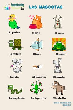 oday, we will cover some of the basic words for domestic animals and pets in Spanish. The vocabulary will be presented through pictures as well as audio examples. The examples provided will then be used in two interesting listening activities with interactive quizzes. #learnSpanish #AnimalsSpanish