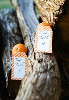 Top Fall Wedding Ideas And Wedding Invitations -InvitesWeddings.com