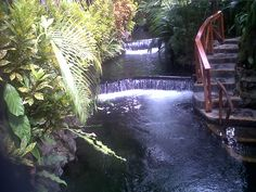 Tabacon Grand Spa and Resort  La Fortuna Alajuela Costa Rica  @ Danielle Krapinski If surfing doesn't work out