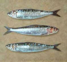 Roman Reisinger (oil on panel): Great Works Of Art, Sea Art, Animal Sketches, Driftwood Art, Fish Art, Wildlife Art, Grafik Design, Creature Design, Art Plastique