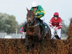 Racing Tips Selection for 28 Dec 2013 and winners yesterday Horse Racing, Festivals, The Selection, Horses, Tips, Animals, Animales, Animaux, Animal