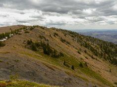 Summit Bull Creek Hills