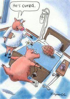 Pork humor