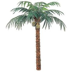 Silk Palm Trees-9' Coconut Palm With Coconuts ❤ liked on Polyvore featuring home, home decor, floral decor, plants, flowers, trees, backgrounds, decor, flower trees and silk flower stems