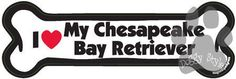 I Love My Chesapeake Bay Retriever Dog Bone Magnet http://doggystylegifts.com/products/i-love-my-chesapeake-bay-retriever-dog-bone-magnet