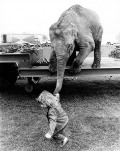John DRYSDALE :: Girl pulling an elephant by his trunk. This is adorable!