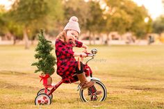 Road rage! joyful gestures photography, family pictures, family photos, cutie patooties, joyful gestures kiddos, Arizona Childrens photographer, Christmas 2016,  Christmas pictures, cute kid, cute, adorable, road rage, Merry Christmas, holly jolly, tis the season, sassy, spunky, toddler girl, toddler, tricycle, plaid, christmas tree, holiday photo, holiday photo ideas