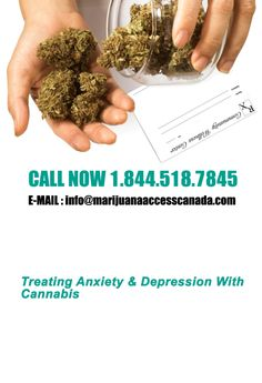 We are a leading cannabis telemedicine clinic in Canada.We have experienced doctors at our medical marijuana clinic to provide medical treatment. Book your appointment for with best cannabis medical clinic, Marijuana Access Canada. How To Treat Anxiety, Medical Cannabis, Assessment, Clinic, The Cure, How Are You Feeling, Health, Website, Green Leaves