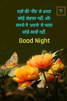 Good Night Hindi Quotes, Good Night Messages, Senior Club, Morning Msg, Marathi Quotes, Amai, Dil Se, Good Morning Images, Friendship Quotes