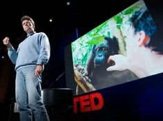 Willie Smits: How to restore a rainforest.  My TOP Ted pick..I believe if we all thought like him: merging modern resources and science with nature and compassion for humans and animals we could make the world a lush living heaven for everyone...this man is absolutely brilliant and a hero.