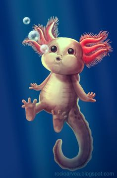 Axolotl Color Version by RoArGo on deviantART
