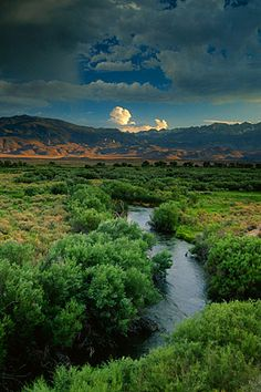 Lower Owens River, Bishop, California by Galen Rowell. Good for kayaking Bishop California, Mammoth Lakes, Mammoth Mountain, West Coast Road Trip, California Camping, Famous Places, Places Around The World, Ciel, Fly Fishing