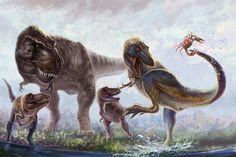 Tyrannosaurus; Late Cretaceous (67 - 66 Ma); Theropod;