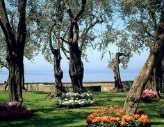 villa fondi garden