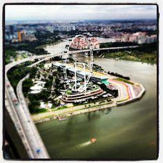 Singapore Flyer // #italianiasingapore #italiansinsingapore #singapore #city #cool #travel #holiday #vacanze #asia #expat #expatriate #espatriati #citta #skyline #town #tourist #water #cbd #business #bridge