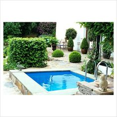 GAP Photos - Garden & Plant Picture Library - Small swimming pool in Mediterranean garden - GAP Photos - Specialising in horticultural photography