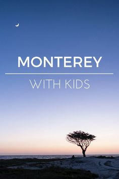 Visit Monterey, California with kids! Find all the best things to do in Monterey and more! #familytravel #monterey #california